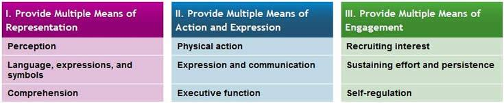 Universal Design for Learning Graphic