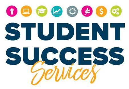 VIu Success Coach Graphic