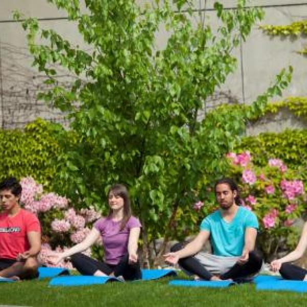 VIU Outdoor Yoga